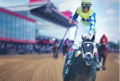 Always Dreaming odds favorite to win Preakness 2017