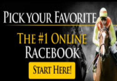 Horse Betting: Get up to 8% Cash Rebate, paid daily, win or lose.